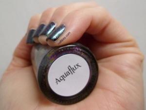 Aquaflux1